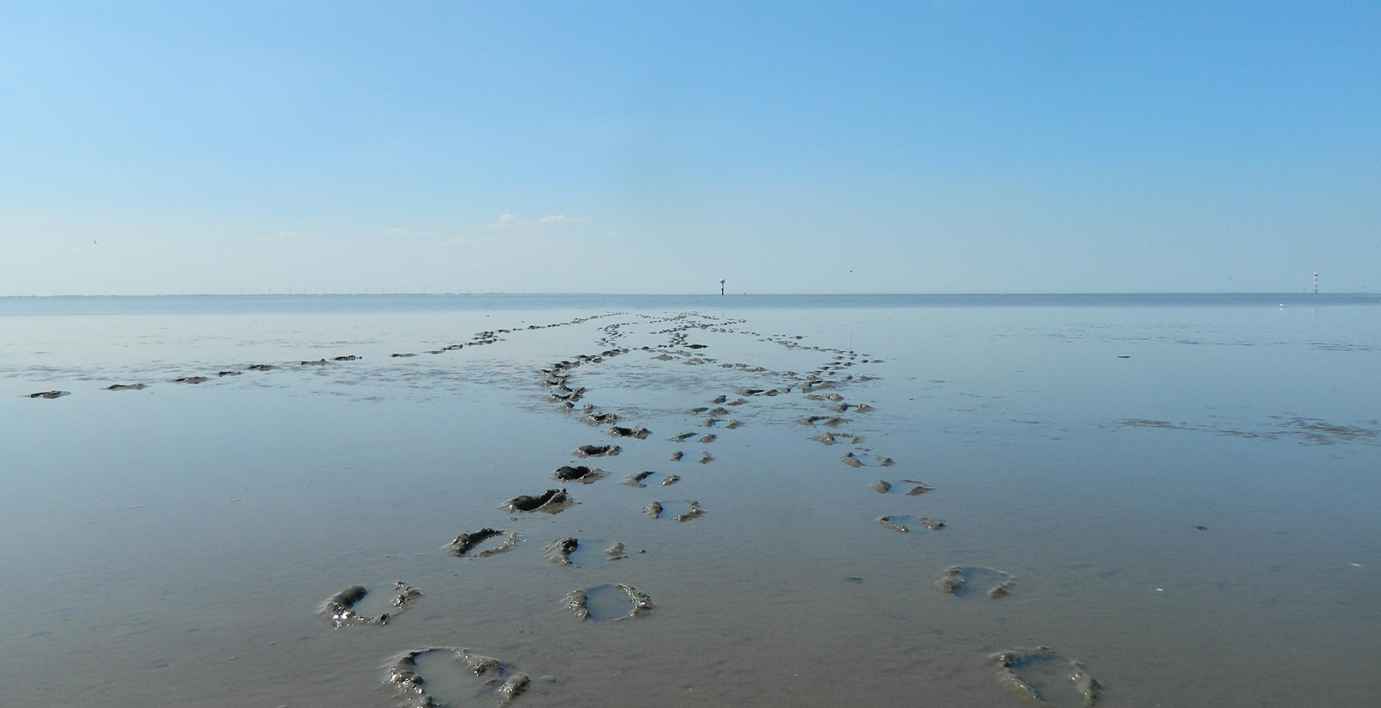 Fussspuren im Wattenmeer